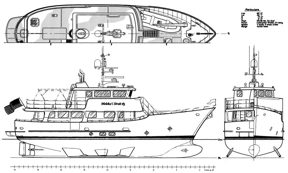 MS65-profile