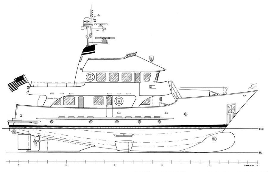 MS79-profile
